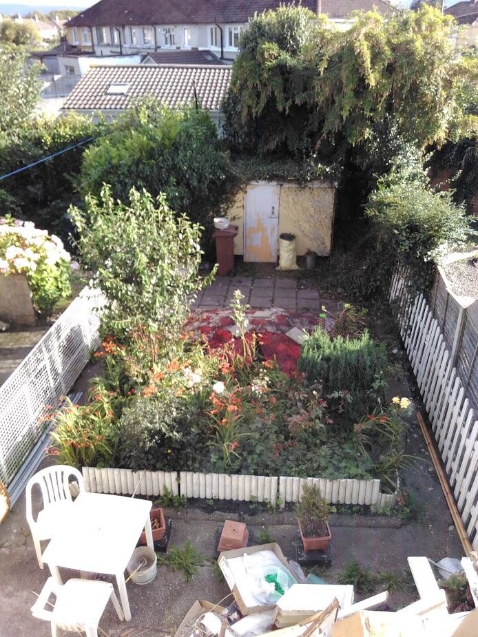 View of Aug 2016 garden