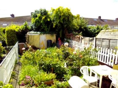 Garden in June 2017