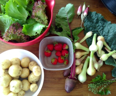 Tonight's dinner featured eleven ingredients from the garden tonight!