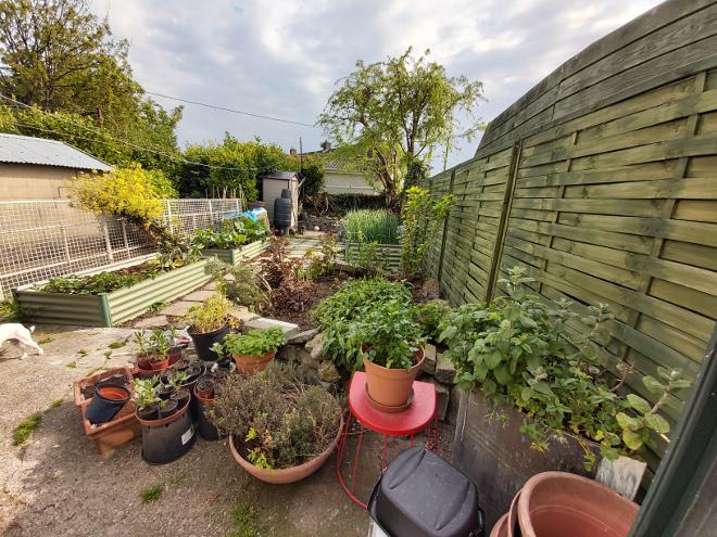 full-garden-april-2020